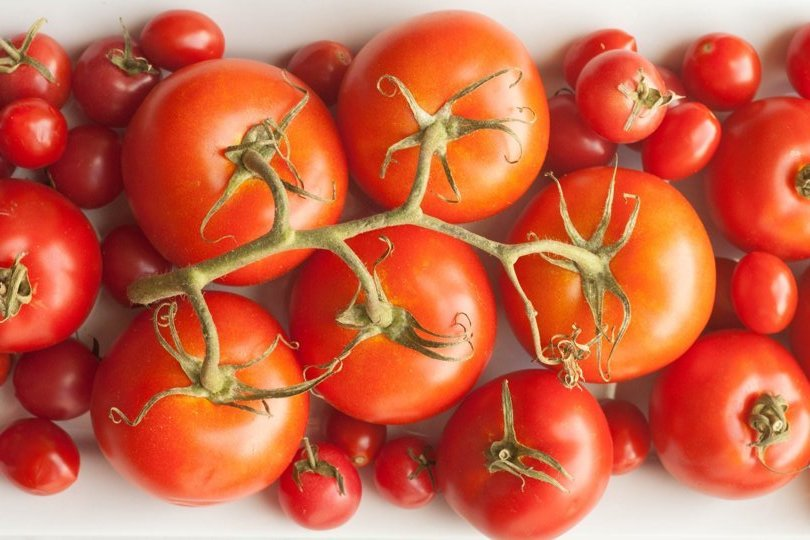 25ST-Tomatoes_fresh