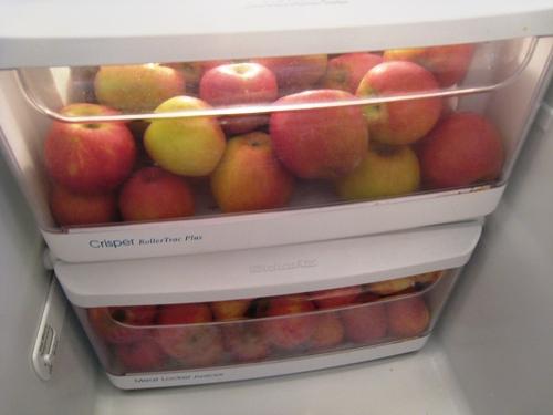 25ST-fridge-apples
